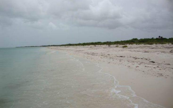 Foto de terreno comercial en venta en, isla de holbox, lázaro cárdenas, quintana roo, 1250815 no 01