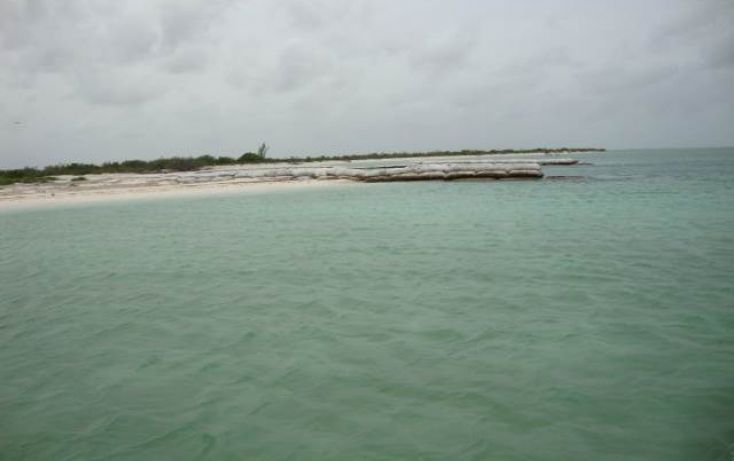 Foto de terreno comercial en venta en, isla de holbox, lázaro cárdenas, quintana roo, 1250815 no 02