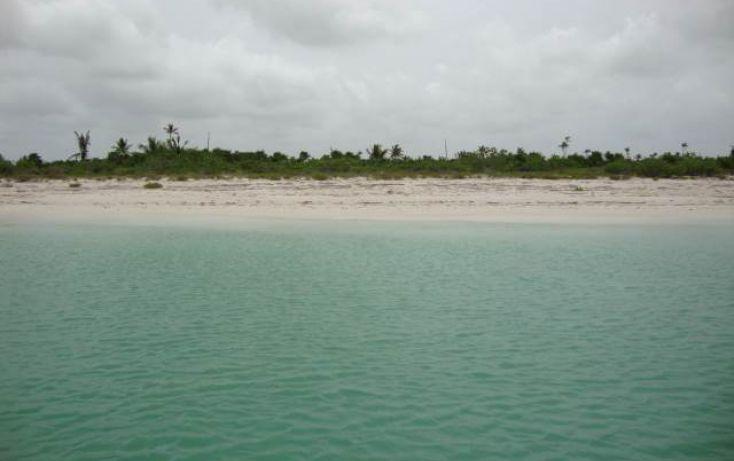 Foto de terreno comercial en venta en, isla de holbox, lázaro cárdenas, quintana roo, 1250815 no 03