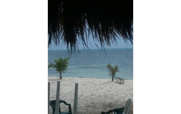 Foto de terreno habitacional en venta en  , isla mujeres centro, isla mujeres, quintana roo, 1108755 No. 06