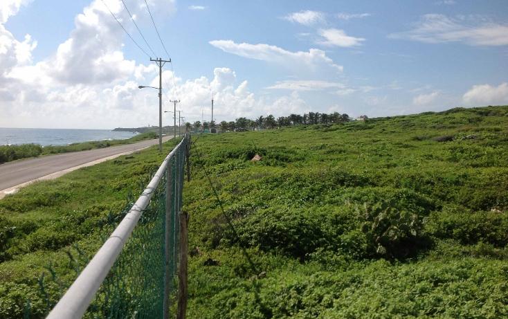 Foto de terreno habitacional en venta en  , isla mujeres centro, isla mujeres, quintana roo, 1257451 No. 04