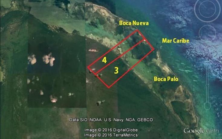 Foto de terreno comercial en venta en  , isla mujeres centro, isla mujeres, quintana roo, 1460067 No. 04