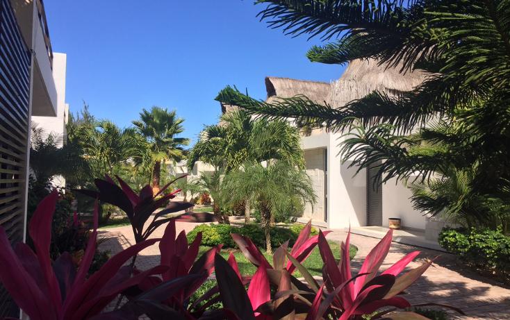 Foto de casa en venta en  , ismael garcia, progreso, yucatán, 1148631 No. 02