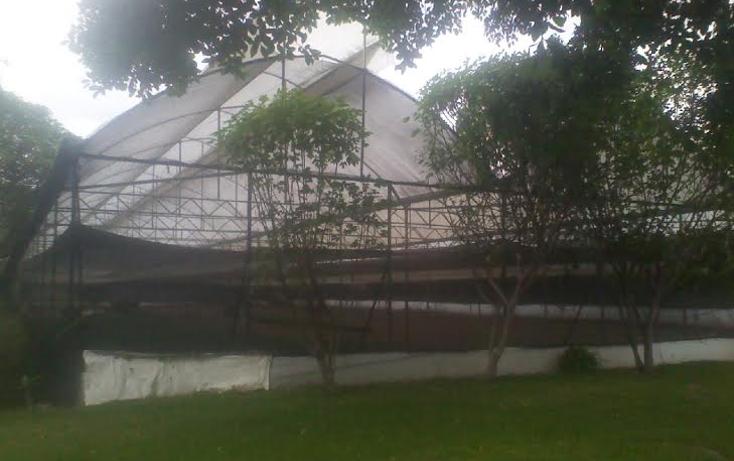 Foto de casa en venta en  , itzamatitl?n, yautepec, morelos, 1382297 No. 02