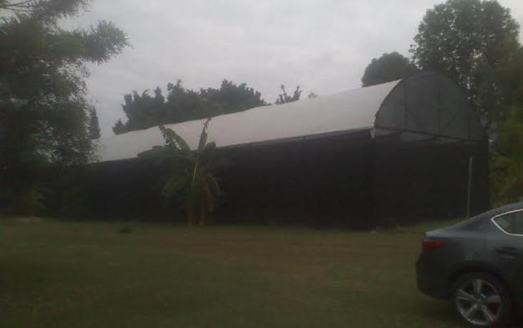 Foto de casa en venta en  , itzamatitl?n, yautepec, morelos, 1382297 No. 05