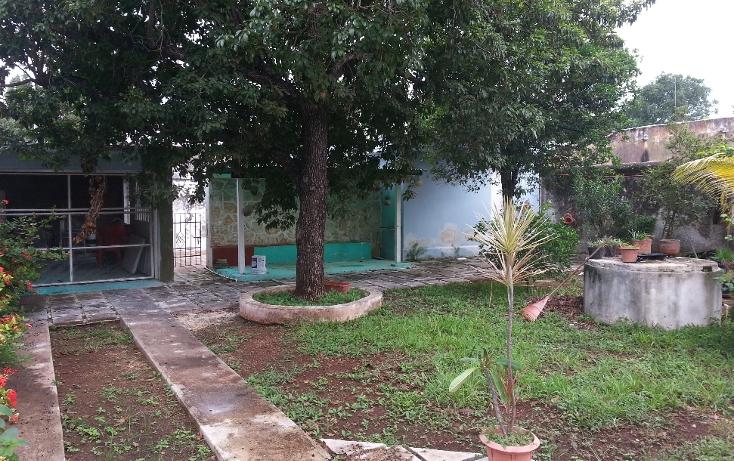 Foto de casa en venta en  , itzimna, m?rida, yucat?n, 1072681 No. 14