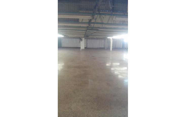 Foto de nave industrial en renta en  , itzimna, m?rida, yucat?n, 1133903 No. 03
