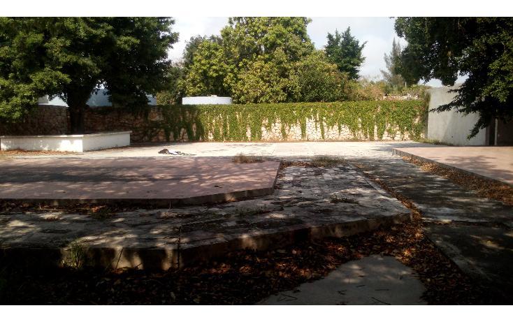 Foto de casa en venta en  , itzimna, mérida, yucatán, 1176867 No. 09