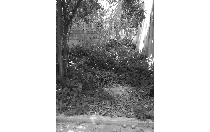 Foto de casa en venta en  , itzimna, mérida, yucatán, 1389349 No. 05