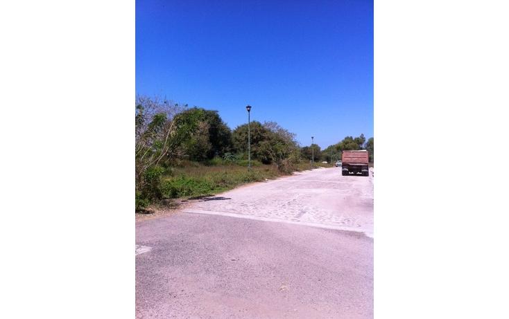 Foto de terreno habitacional en venta en  , ixtapa centro, puerto vallarta, jalisco, 1225551 No. 03