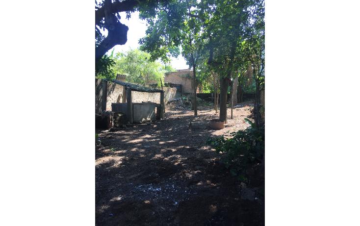 Foto de terreno habitacional en venta en  , ixtapa centro, puerto vallarta, jalisco, 1459559 No. 10
