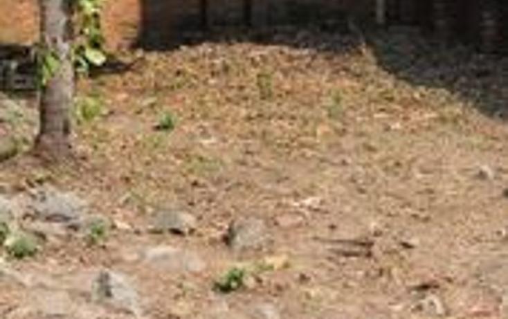 Foto de terreno habitacional en venta en  , ixtapa las palmas, zihuatanejo de azueta, guerrero, 1165125 No. 11