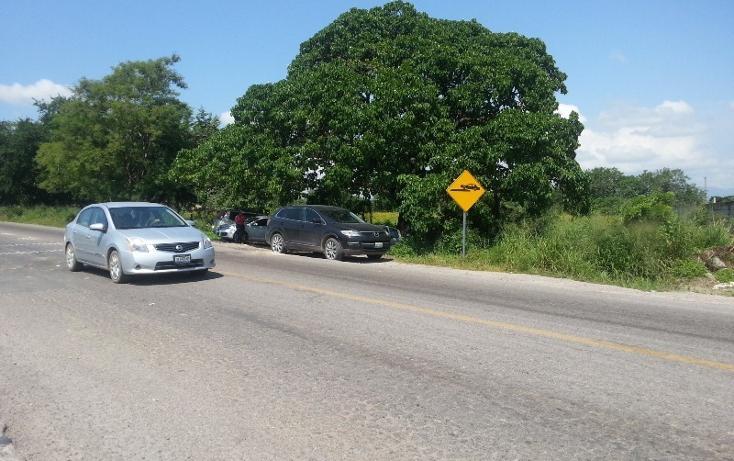 Foto de terreno comercial en venta en  , ixtapa, puerto vallarta, jalisco, 1310055 No. 02