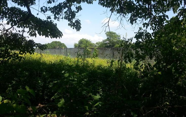 Foto de terreno comercial en venta en  , ixtapa, puerto vallarta, jalisco, 1310055 No. 06