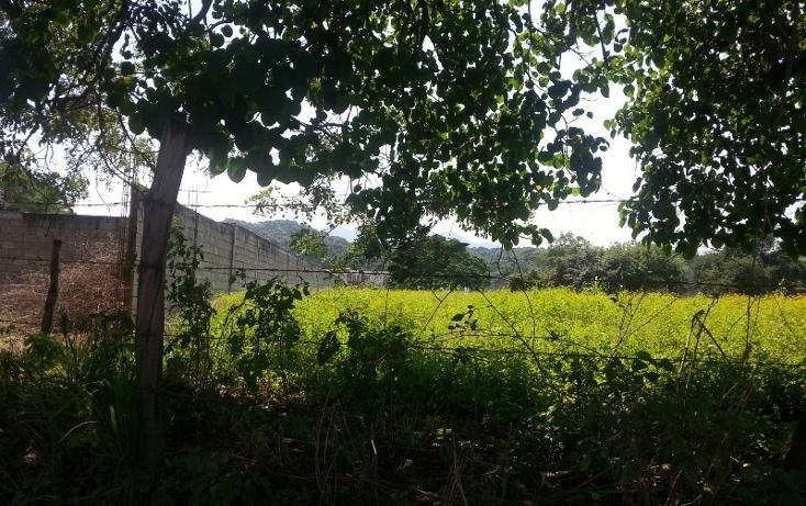 Foto de terreno comercial en venta en  , ixtapa, puerto vallarta, jalisco, 1310055 No. 08