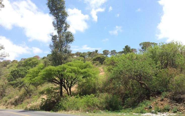 Foto de terreno habitacional en venta en  , ixtapan de la sal, ixtapan de la sal, méxico, 1158667 No. 05