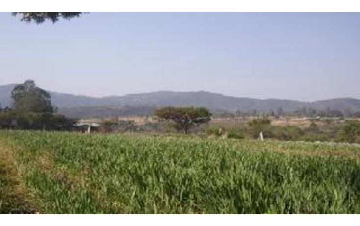Foto de terreno habitacional en venta en  , ixtapan de la sal, ixtapan de la sal, méxico, 1183411 No. 02