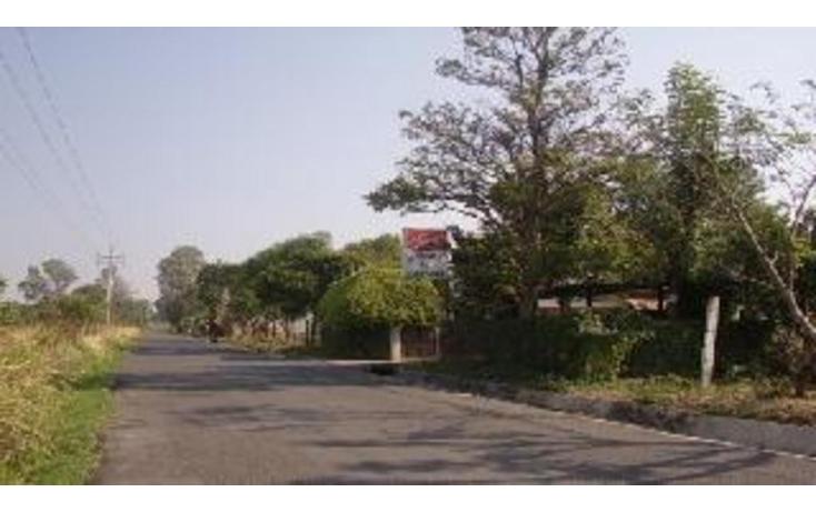 Foto de terreno habitacional en venta en  , ixtapan de la sal, ixtapan de la sal, méxico, 1183411 No. 05