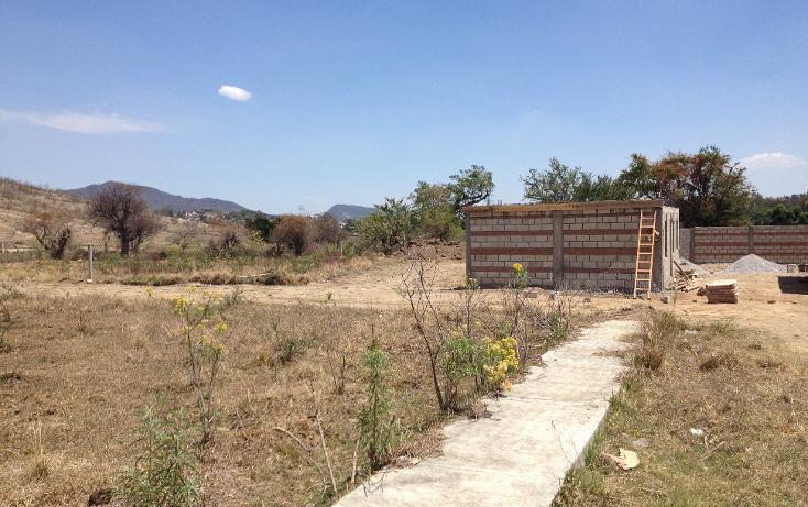 Foto de terreno habitacional en venta en  , ixtapan de la sal, ixtapan de la sal, méxico, 1804276 No. 02