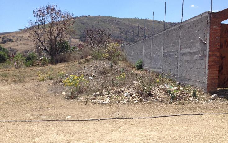 Foto de terreno habitacional en venta en  , ixtapan de la sal, ixtapan de la sal, méxico, 1804276 No. 07