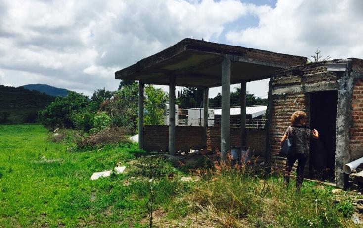 Foto de terreno habitacional en venta en  , ixtlahuacan de los membrillos, ixtlahuacán de los membrillos, jalisco, 1332163 No. 01