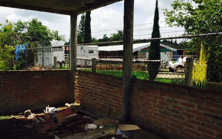 Foto de terreno habitacional en venta en  , ixtlahuacan de los membrillos, ixtlahuacán de los membrillos, jalisco, 1332163 No. 03
