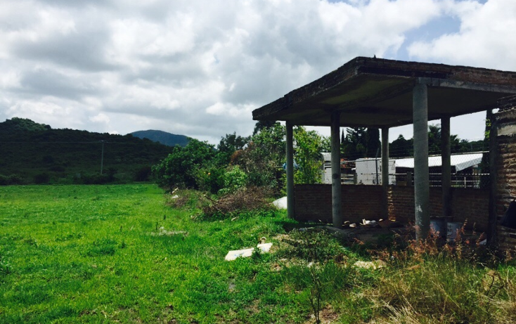 Foto de terreno habitacional en venta en  , ixtlahuacan de los membrillos, ixtlahuacán de los membrillos, jalisco, 1332163 No. 06