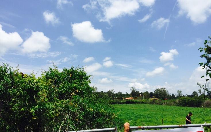 Foto de terreno habitacional en venta en  , ixtlahuacan de los membrillos, ixtlahuacán de los membrillos, jalisco, 1332163 No. 08