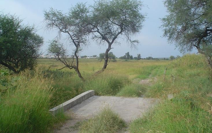 Foto de terreno habitacional en venta en  , ixtlahuacan de los membrillos, ixtlahuacán de los membrillos, jalisco, 2034112 No. 07