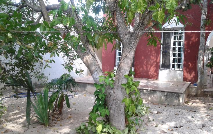 Foto de rancho en venta en  , izamal, izamal, yucat?n, 1296789 No. 04