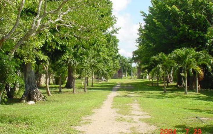 Foto de rancho en venta en, izamal, izamal, yucatán, 2020141 no 07