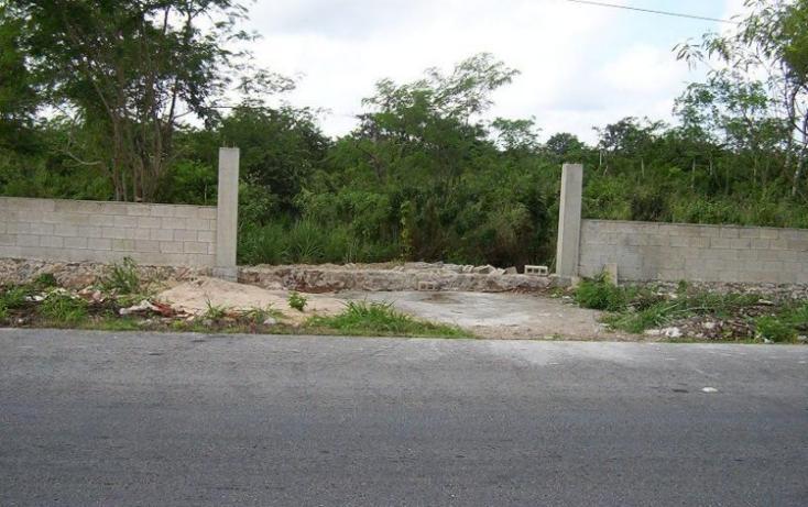 Foto de terreno habitacional en venta en  , izamal, izamal, yucatán, 448046 No. 05