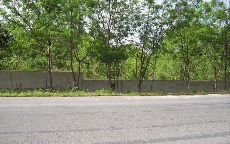 Foto de terreno habitacional en venta en  , izamal, izamal, yucatán, 448046 No. 07