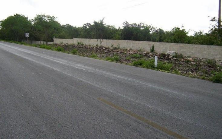 Foto de terreno habitacional en venta en  , izamal, izamal, yucatán, 448046 No. 08