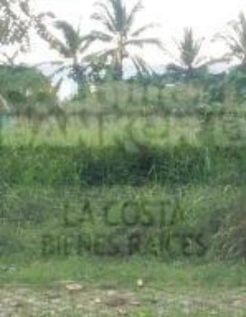 Foto de terreno habitacional en venta en  , nuevo vallarta, bahía de banderas, nayarit, 1253729 No. 02