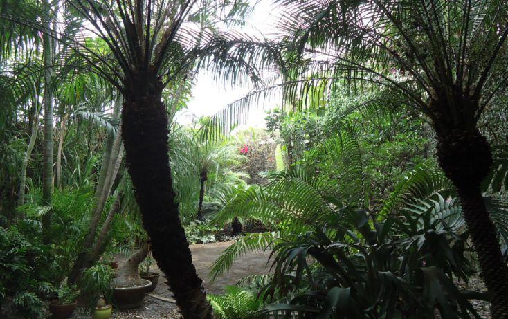 Foto de casa en venta en, jacarandas, cuernavaca, morelos, 1103021 no 02