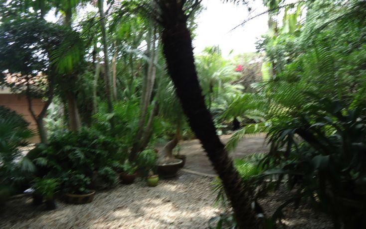 Foto de casa en venta en, jacarandas, cuernavaca, morelos, 1103021 no 03