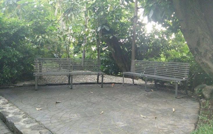 Foto de departamento en renta en  , jacarandas, cuernavaca, morelos, 1177663 No. 09
