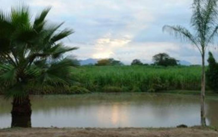 Foto de rancho en venta en, jalcomulco, jalcomulco, veracruz, 772889 no 08