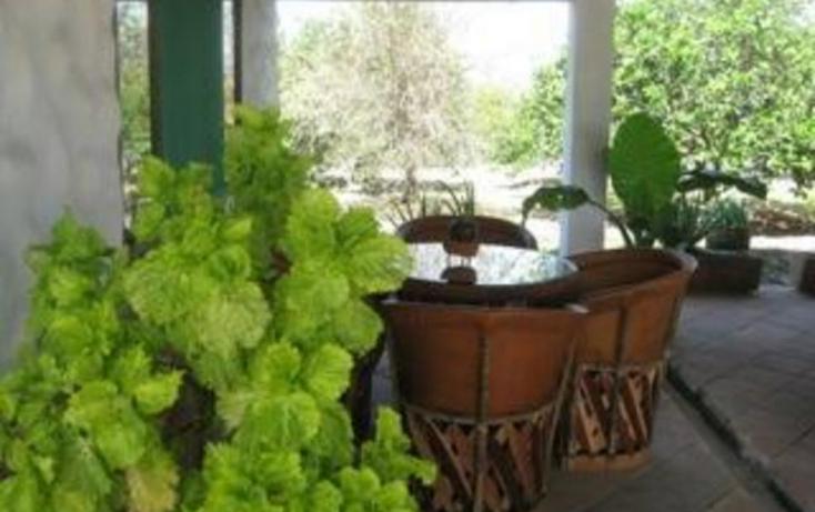 Foto de rancho en venta en, jalcomulco, jalcomulco, veracruz, 772889 no 13