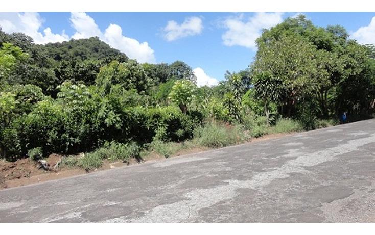 Foto de terreno habitacional en venta en  , jalcomulco, jalcomulco, veracruz de ignacio de la llave, 1080277 No. 01