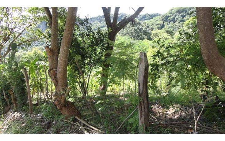 Foto de terreno habitacional en venta en  , jalcomulco, jalcomulco, veracruz de ignacio de la llave, 1080277 No. 02