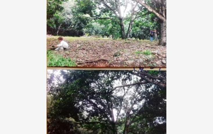 Foto de terreno habitacional en venta en jalcomulco kilometro 4 nonumber, jalcomulco, jalcomulco, veracruz de ignacio de la llave, 1584876 No. 04