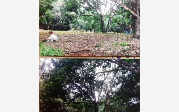 Foto de terreno habitacional en venta en jalcomulco km 4, jalcomulco, jalcomulco, veracruz, 1584876 no 04
