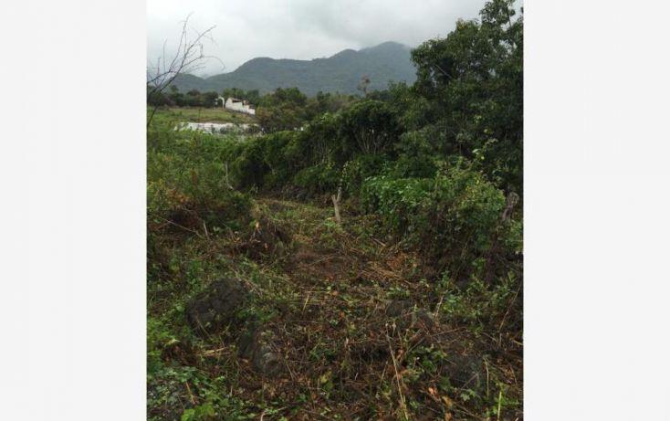 Foto de terreno habitacional en venta en jalmolonga, malinalco, malinalco, estado de méxico, 1623208 no 02