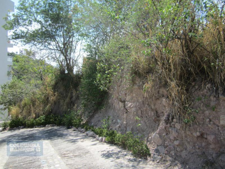Foto de terreno habitacional en venta en  7, 5 de diciembre, puerto vallarta, jalisco, 1755679 No. 06