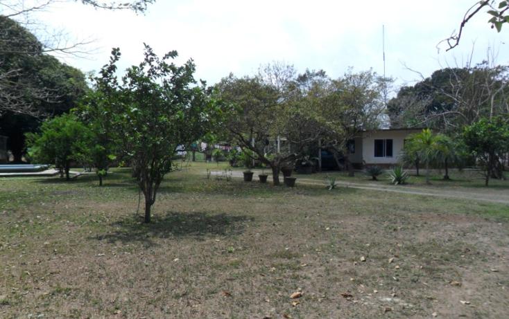 Foto de terreno comercial en venta en  , jamapa, jamapa, veracruz de ignacio de la llave, 1128911 No. 28