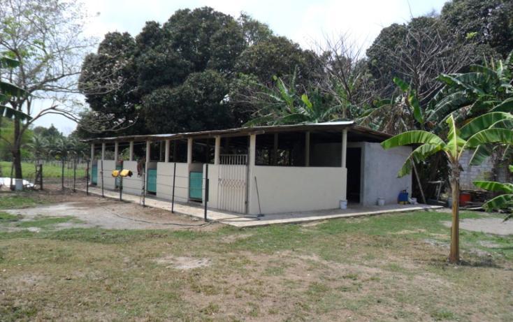 Foto de terreno comercial en venta en  , jamapa, jamapa, veracruz de ignacio de la llave, 1128911 No. 29