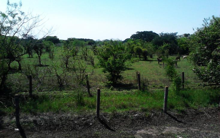 Foto de terreno comercial en venta en  , jamapa, jamapa, veracruz de ignacio de la llave, 942839 No. 01