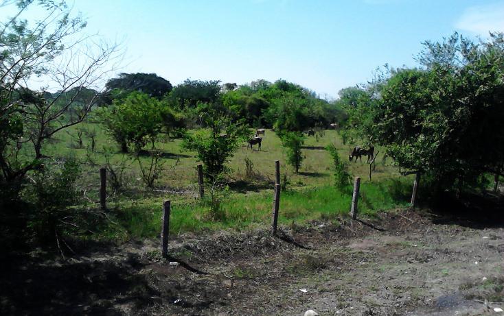 Foto de terreno comercial en venta en  , jamapa, jamapa, veracruz de ignacio de la llave, 942839 No. 05